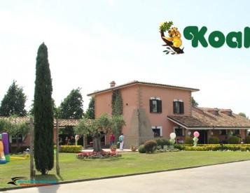 Istituto Koala